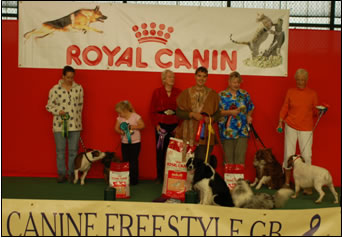 Welcome to Canine Freestyle GB